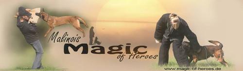 Magic of Heroes