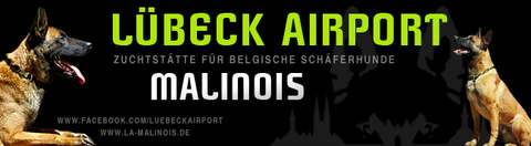 luebeck_airport