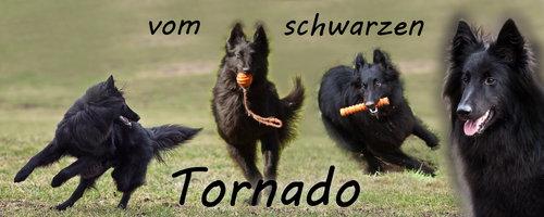 vom_schwarzen_Tornado