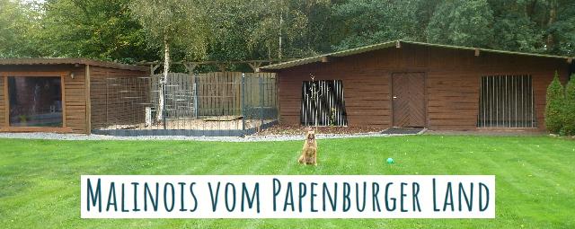 Papenburger Land