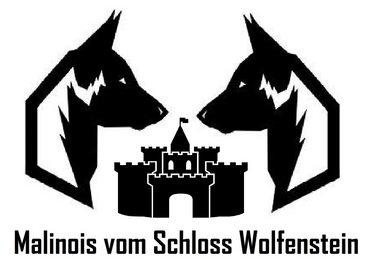 vom_Schloss_Wolfenstein