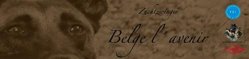 Belge_I'avenir
