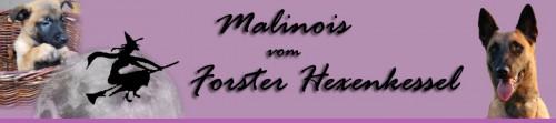 Forster Hexenkessel