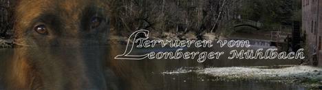 Leonberger_Muehlbach
