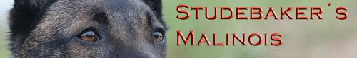 Studebakers