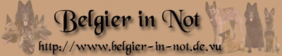 Belgier in Not